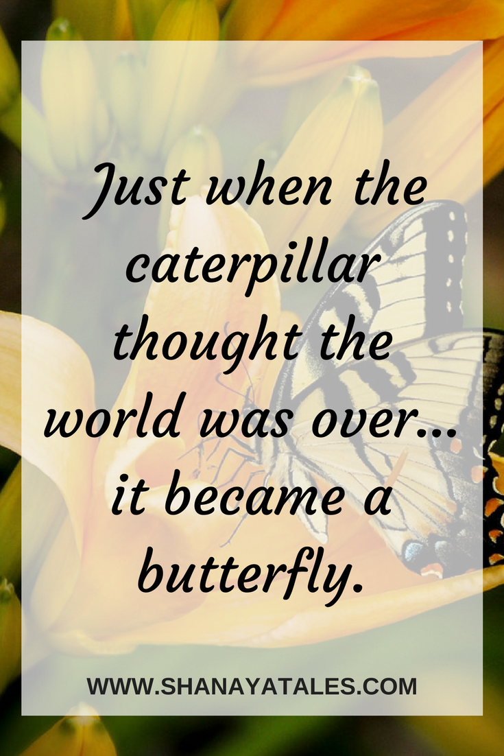 Just When The Caterpillar Thought The World Was Over - It Became A Butterfly
