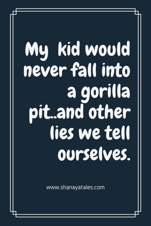 My kid would never fall into a gorilla pit..and other lies we tell ourselves.
